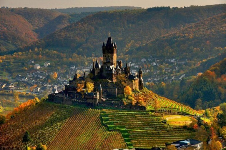 Vineyards of Reichsburg Castle
