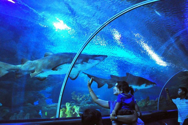 One of the largest aquariums in the world.