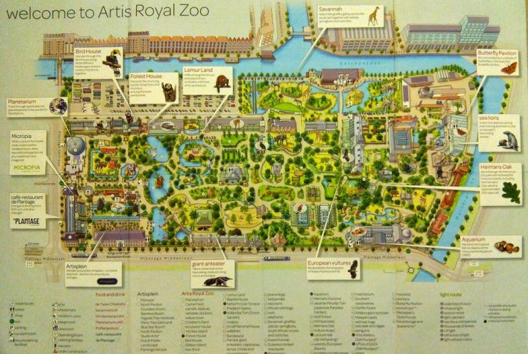 Map of the Artis Zoo