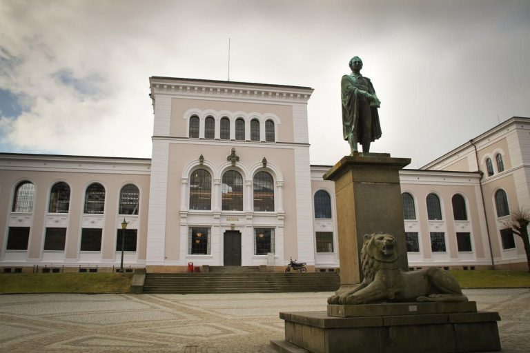 University of the city