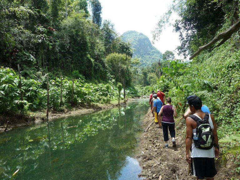 Excursions to Khao Sok Park