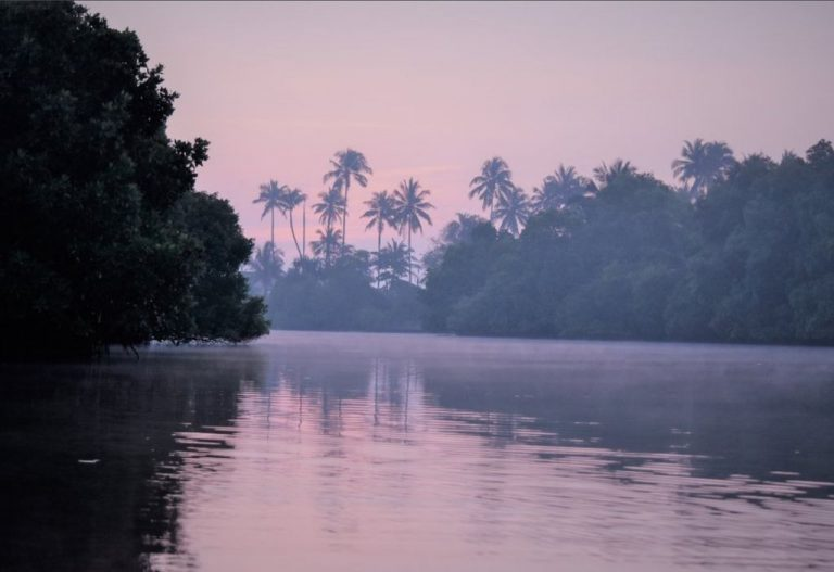 Photo: Rekava Lagoon at Dawn