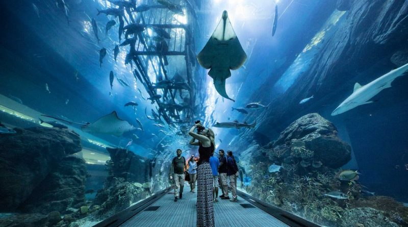 The aquarium in Dubai