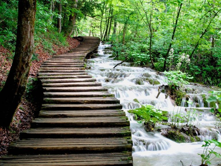 Hiking trail on Plitvice Lakes