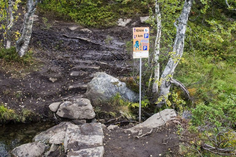 Pointers along the route to Troll Language