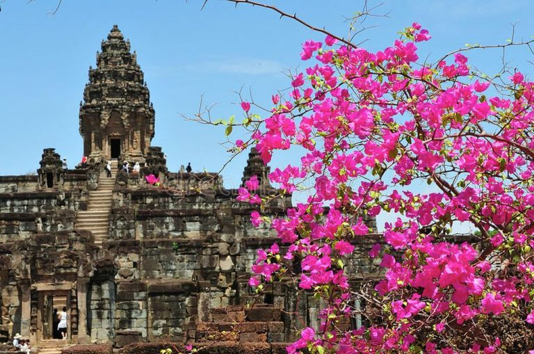 Blooming temple complex Roulos