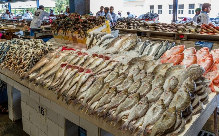 Assortment of fish in a market in Denmark