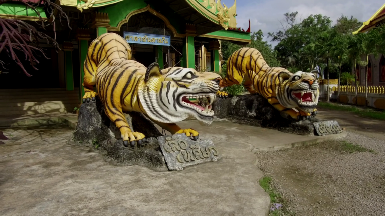 Tiger statues at the entrance to the unfinished temple