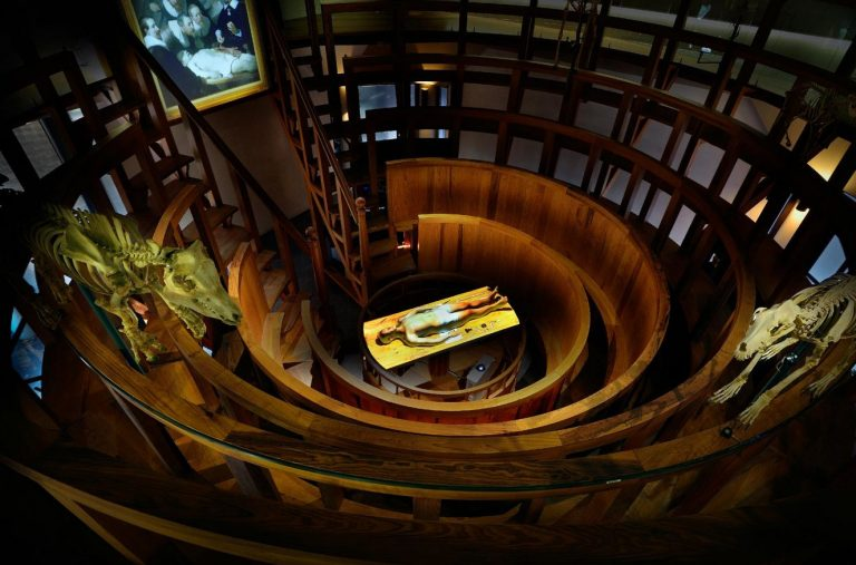 Anatomical theater