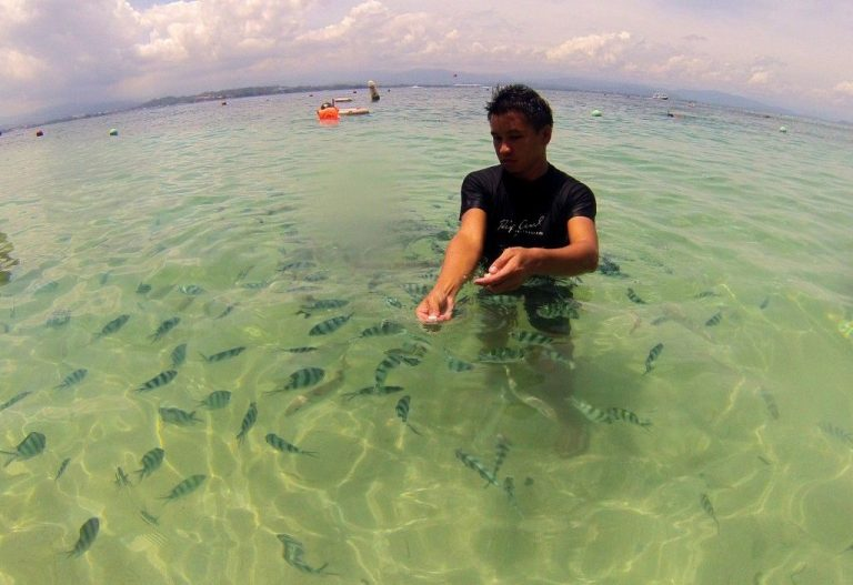 The transparent sea of ​​Tunku Abdul Rahman Park