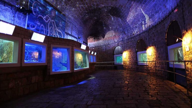 In the fortress of St. Ivan are the Aquarium