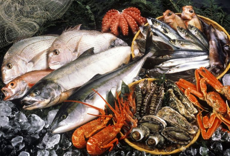 Photo: fish and seafood