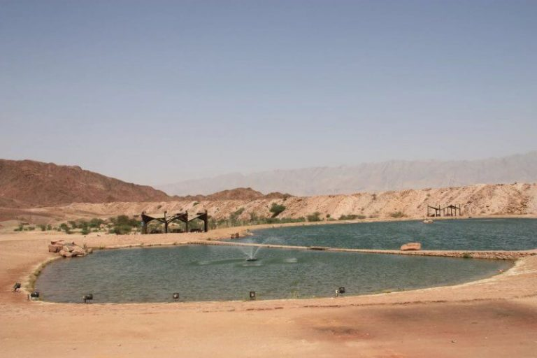Timna Lake in the national park