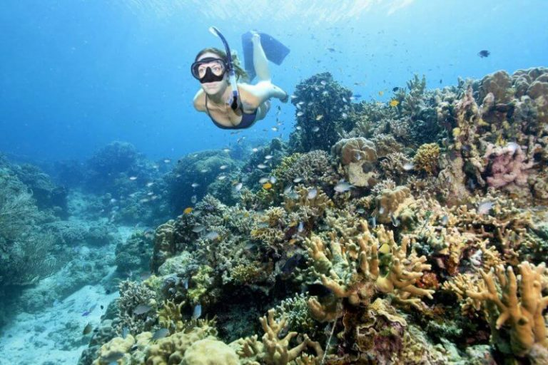 Snorkeling in the Similas Islands
