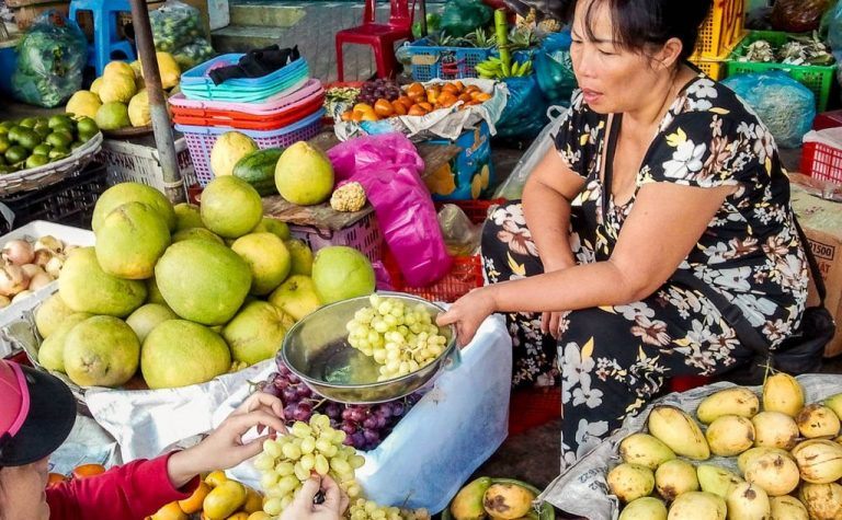 Traded in a market in Nha Trang
