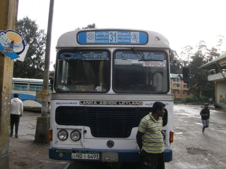 Bus number 31