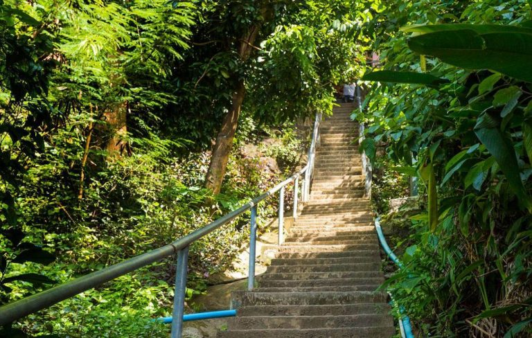 Concrete staircase at View point