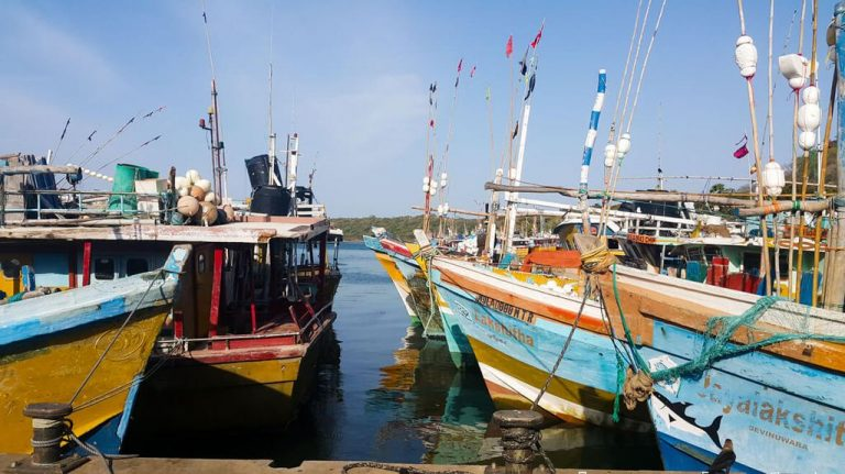 In the port of Trincomalee